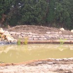 construction_bassin